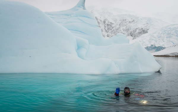 Snorkeling in the Arctic. Photo by Aurora Expeditions