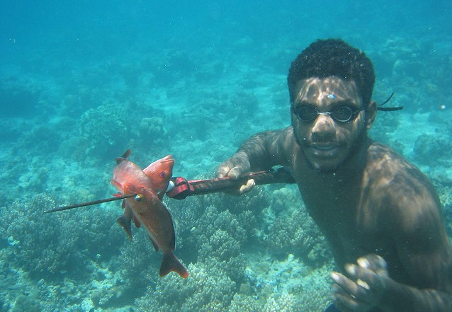 Where to go spearfishing