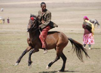 An Oromo man displays his horsemanship in the Bale Mountains region, Southern Ethiopia Image – Sam McManus